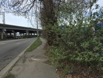 The Duwamish Trail needs a lot of work.