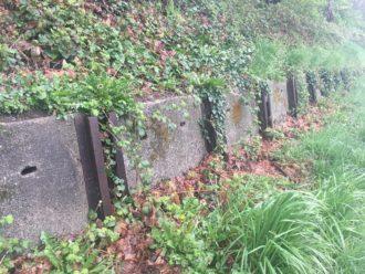 Beacon Hill History Ride @ Jefferson Community Center | Seattle | Washington | United States