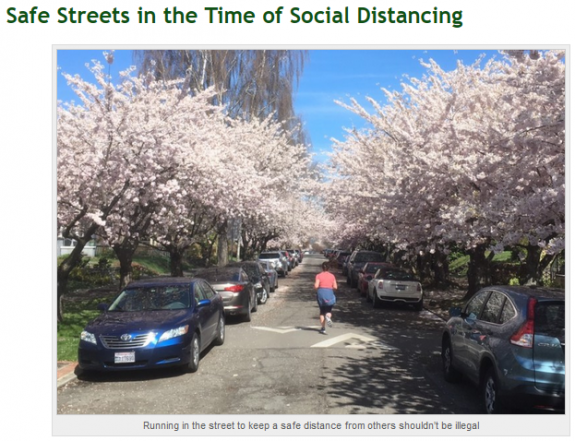 Photo of a person running in the middle of a neighborhood street. Cherry blossoms line the street. Caption: Running in the street to keep a safe distance from others shouldn't be illegal