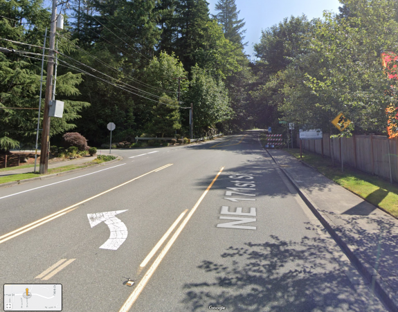 Photo from a roadway with a left turn lane. A treelined street is ahead.